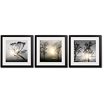 Amazoncom Black White And Gold Wall Decor Pictures Printed On