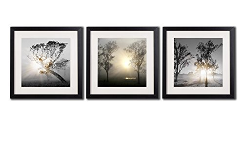 Cheap  Black And White Wall Art Painting For Living Room Decor Tree At..