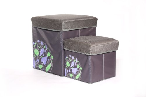 B&E Home Essential 2 Piece Folding Storage Stools Set