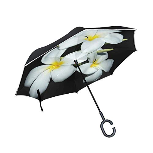 Double Layer Inverted Plumeria Closeup Tree Decoration Floral Petal Umbrellas Reverse Folding Umbrella Windproof Uv Protection Big Straight Umbrella for Car Rain Outdoor with C-Shaped Handle