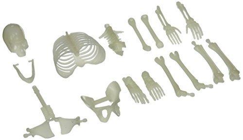 Glow in the Dark Skeleton Box of Bones Action Figure (3-Pack)