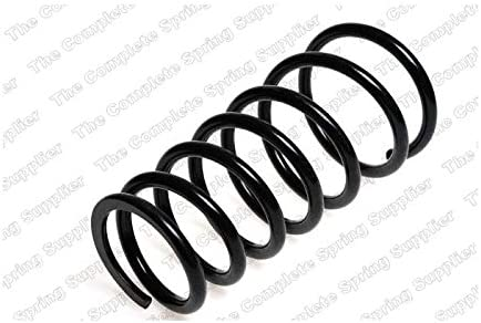 Lesjofers 4292539 Coil Spring Rear