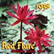 Red Flare Tropical Night Blooming Water Lily
