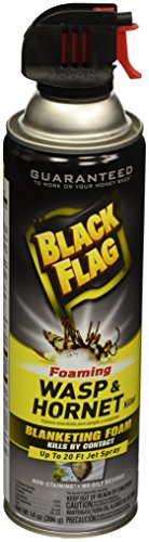 Black Flag HG-11089 Foaming Wasp & Hornet Killer Aerosol Spray, 14 oz