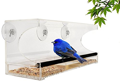Acrylic Window Bird Feeder with Removable Tray, Drain Holes, and 3 Suction Cups, by Garden Products USA - Wing Nut Refill
