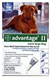 Professional Pest Products 04461774 Advantage II For XL Dogs, Blue, 4-Pk. - Quantity 12