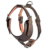 Hide & Drink, Thick Leather Adjustable Dog Harness/No-Pull Pet Harness/Outdoor Pet Vest, Handmade :: Bourbon Brown