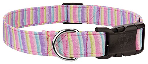 - Country Brook Design Cotton Candy Stripes Designer Dog Collar-XS
