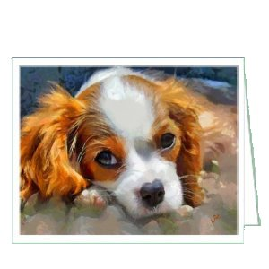 Cavalier King Charles Spaniel - Dog Blank Note Cards - Set of 6 with Envelopesby - Spaniel Gifts Set