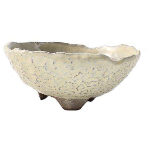 Bonsai Wild Grass Ceramic Pot Round Shape Rocky Skin Glazed (Ceramic Grass)