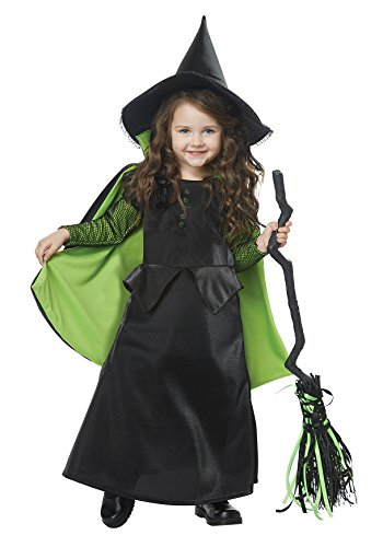 California Costumes Wizard West, Dorothy Wicked Witch of oz Toddler Costume, Black/Green, TD -