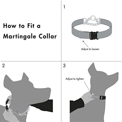 Friends Forever Martingale Collars for Dogs, Reflective No Pull Dog Collar for Training Large/Medium Breed Dogs, Medium