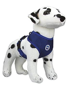 Aqua Coolkeeper - Arnés de perro refrescante: Amazon.es: Productos ...