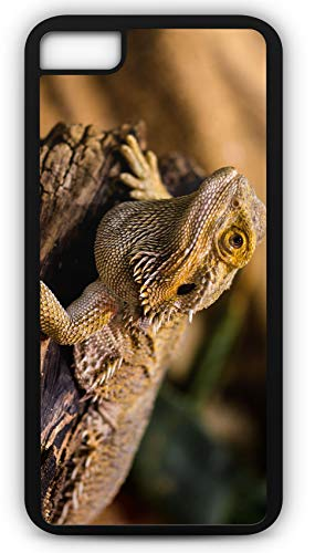 iPhone 8 Plus 8+ Case Lizard Agame Reptile Amphibian Dragon Customizable by TYD Designs in Black Plastic Black Rubber Tough Case