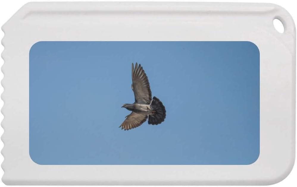 IC00003347 Stamp Press Flying Pigeon Plastic Ice Scraper