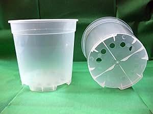 Vasos transparentes para orquídeas 19 x 18,5 cm (n.100) unidades, diseño de Arca empresa