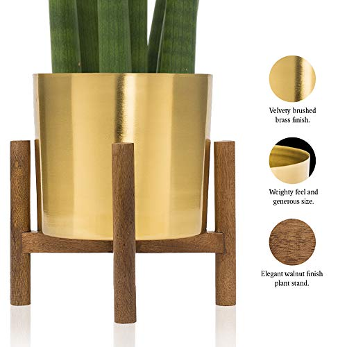 - Mid Century Brass Plated Gold Planter with Stand | 7 Inch Large Metal Pot with Mango Wood Stand | Modern Flower Pot Decor for Living Room | for Orchid, Aloe, Succulents & Large Cactus Plants | Indoor