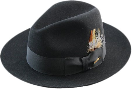 - Stetson Men's Sttson Temple Royal Deluxe Fur Felt Hat, Black, 7.25