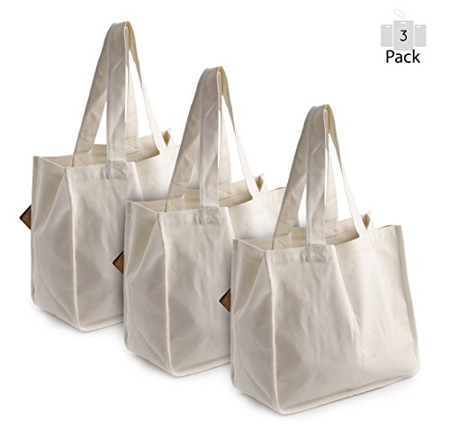 PreserveNext Deluxe Reusable Cotton Canvas Grocery Tote Bag with Bottle Sleeves - Natural (3 Pack)