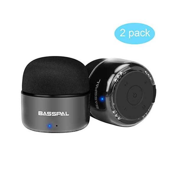 Enceinte Bluetooth Portables, BassPal Petit Haut-Parleur sans Fil avec Radio, Étanche IPX5, HD Stéréo Son et Basses Améliorées, Mini Format de Poche pour Douche de Voyage à Domicile Pool - 2 Pack 1