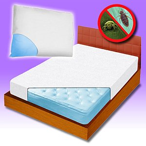 Amazon Com Bed Bug Mattress Cover Home Kitchen