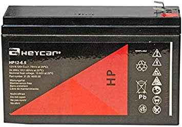 Heycar - Batería de Plomo AGM para Aplicaciones de Alta Descarga. 12V / 6Ah. Capacidad de Descarga 50 A 1,85 Kg. 151,5 x 50 x 95/101 mm: Amazon.es: Electrónica