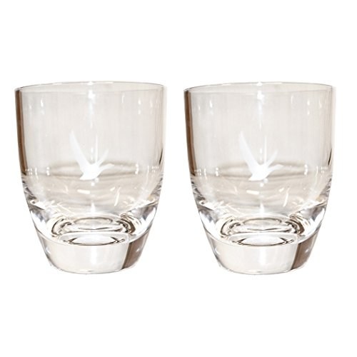 grey-goose-acrylic-glasses-set-of-2