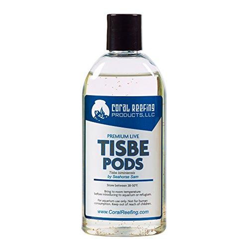 600+ Premium Live Tisbe Pods (Tigger Pods)