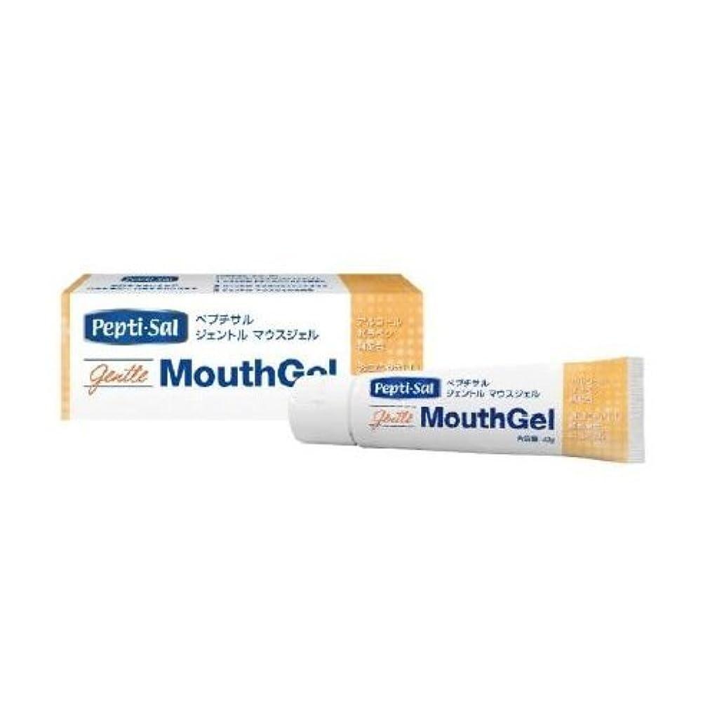親愛なディレクトリ反響するタフデント入れ歯の専用歯ブラシ