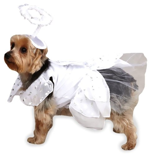 Casual Canine Angel Paws Dog Costume, Large, White