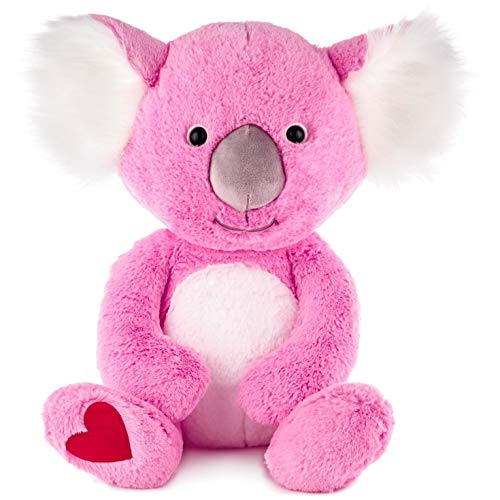 Hallmark Kuddle Koala Bear Jumbo Stuffed Animal, 15