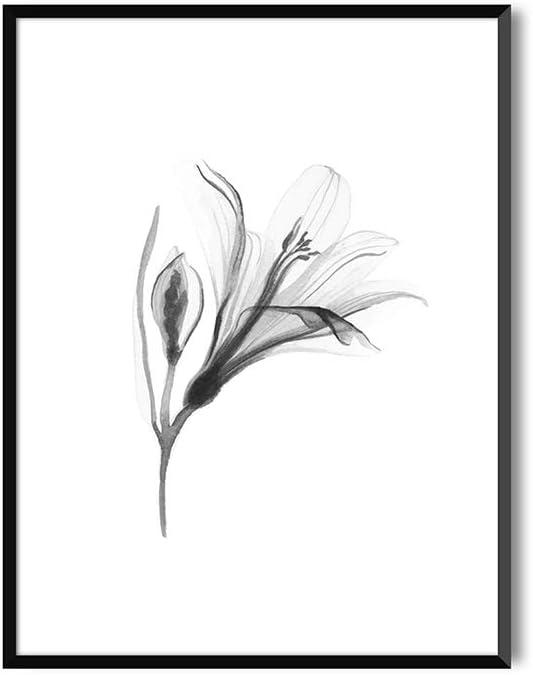 MILUKA Láminas para Enmarcar para Cuadro de Estilo Elegante | Póster de Plantas Estilo Acuarela | Lily | Varios Tamaños (20 x 30 cm)