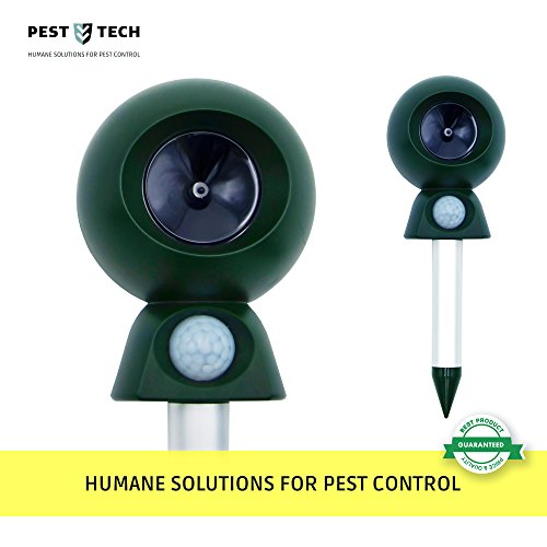 Motion Activated Ultrasonic pest repeller and ultimate Critter Ridder. Effective against Deer, Squirrel, Rabbit, Chipmunk, Skunk, Dog, Raccoon and Cat. Ideal for Gardens, Basements or (Critter Repellers)
