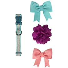 Bow & Arrow Pet Glitter Nylon Dog Collar With 2 Bow Slides and 1 Flower Slide, Large, Teal