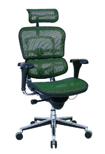 Ergohuman Me7erg - Ergohuman Executive Chair with Headrest in Green - Ships in 24 Hours with a Lifetime Warranty!