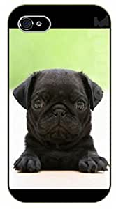 LJF phone case iPhone 5C Black pug, puppy - black plastic case / dog, animals, dogs