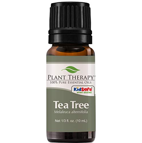 Plant Therapy Tea Tree (Melaleuca) Essential Oil 10 mL (1/3 oz) 100% Pure, Undiluted, Therapeutic Grade