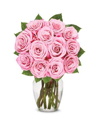 Flowers - One Dozen Light Pink Roses (Free Vase Included)