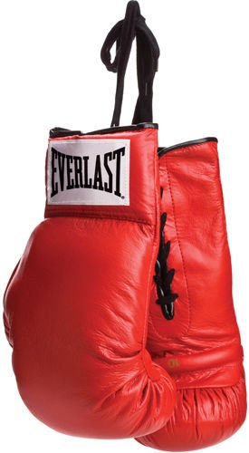 Everlast Red Leather Pair of Boxing Gloves
