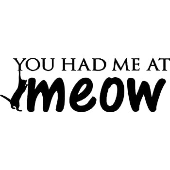You Had Me At Meow Cute Funny Cat Dog Pet Vinyl Wall Quotes Decals Sayings  Art