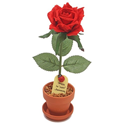 1st Year Wedding Anniversary Gift Potted Paper Desk Rose Perfect Present for Wife or Husband