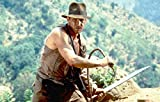Indiana Jones Style 8 Foot & 10 Foot Dark Brown