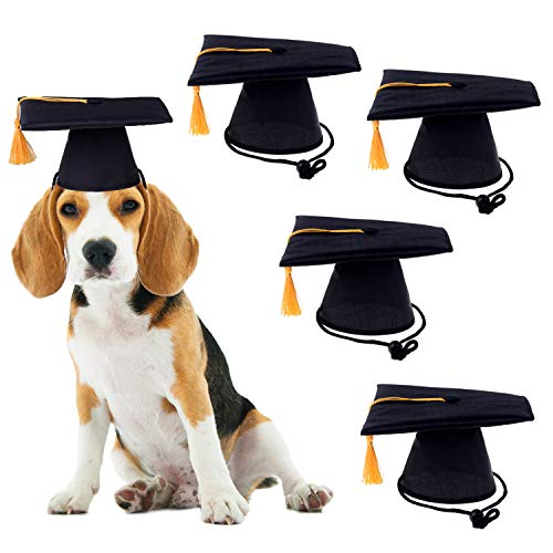 Xgood 4 Pieces Graduation Hats Pet Costume Hat Decorations Party Decor Grad Hat with Gold Tassel for Dogs Cats Pets Decor (Black)]()