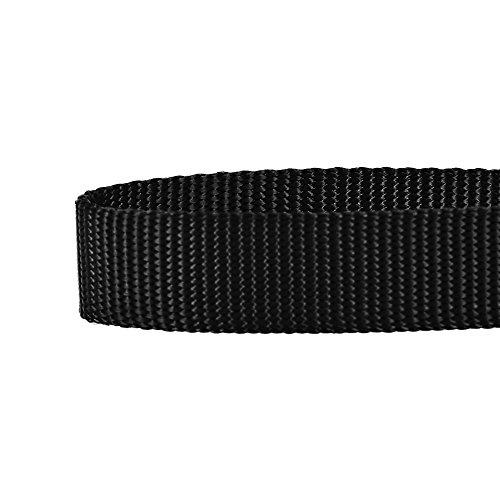 "Blueberry Pet Essentials 22 Colors Classic Dog Collar, Black, Medium, Neck 14.5""-20"", Collars for Dogs"
