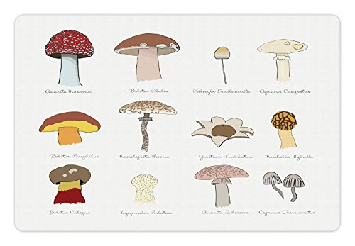 (Ambesonne Mushroom Pet Mat for Food and Water, Colorful Fungi Pattern Blusher Boletus Sketch Style Plants Autumn Illustration, Rectangle Non-Slip Rubber Mat for Dogs and Cats, Multicolor)