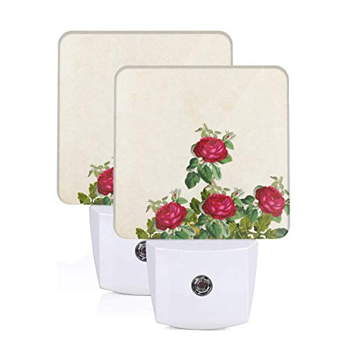 Flower Floral Background Border Garden Frame Vintage Card Art Wedding Auto Sensor LED Dusk to Dawn Night Light Set of 2 White