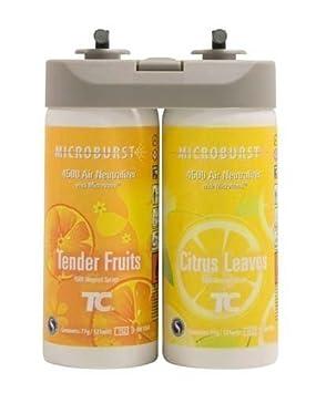 Ráfaga dúo ambientador olor Restickable neutralizador de aerosoles dispensador 4 unidades Fruits/Citrus