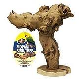 Zoo Med Mopani Bird Tree, 12-Inch, My Pet Supplies