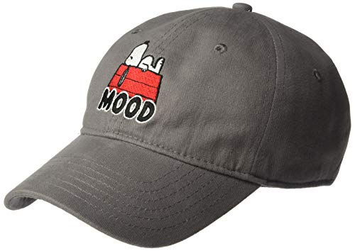 Peanuts Men's Snoopy and Charlie Brown Baseball Caps, Mood Gray, One Size ()