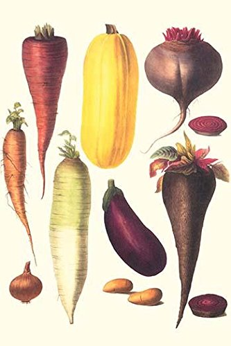 Illustration from a famous French seed catalog and the vegetables that can be grown Poster Print by Philippe-Victoire Lev?que de Vilmorin (24 x 36) by Posterazzi